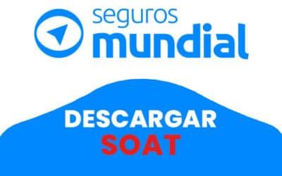 Compañía Mundial de Seguros descargar Soat por placa 2021